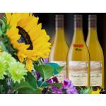2019 Pinot Gris 12-bottle Summer Case - Bundle