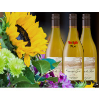 2019 Pinot Gris 6-bottles Summer - Bundle
