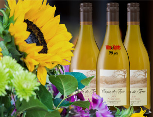 2019 Pinot Gris 12-bottle Summer Case - Bundle
