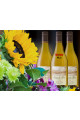 2019 Pinot Gris 6-bottles Summer - Bundle